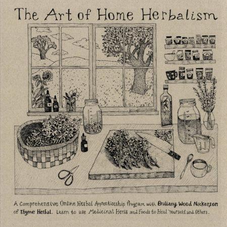 Art Of Home Herbalism Online
