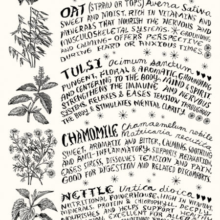 Tea & Infusion Herbs Poster
