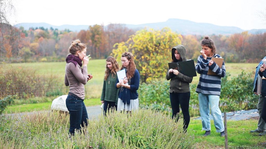 Thyme Herbal Classroom