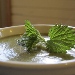 Ramp Nettle Soup