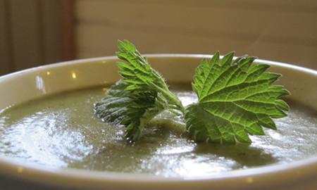 Ramp Nettle Soup