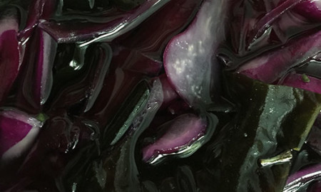 Purple-cabbage-kraut