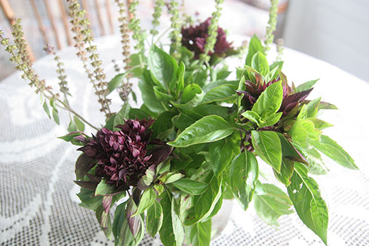 bouquet-of-basil