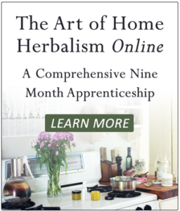 herb, herbs, herbal medicine, herb classes, art of home herbalism, art of home herbalism online, brittany nickerson, brittany wood nickerson, the herbalist's kitchen, thyme herbal, pioneer valley, Northampton, western Massachusetts, Massachusetts, Amherst, Conway, Brattleboro, Boston, herb schools, online education, distance learning, online classes, online herbal classes, natural medicine, homestead, homesteading