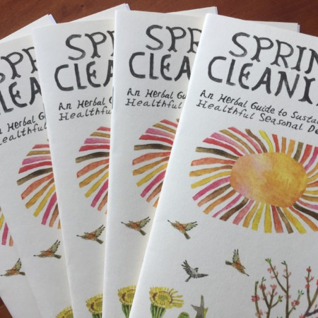 Spring Cleaning Pamphlet