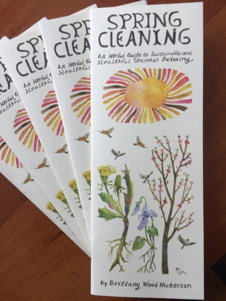 Spring Cleaning zine by Brittany Wood Nickerson