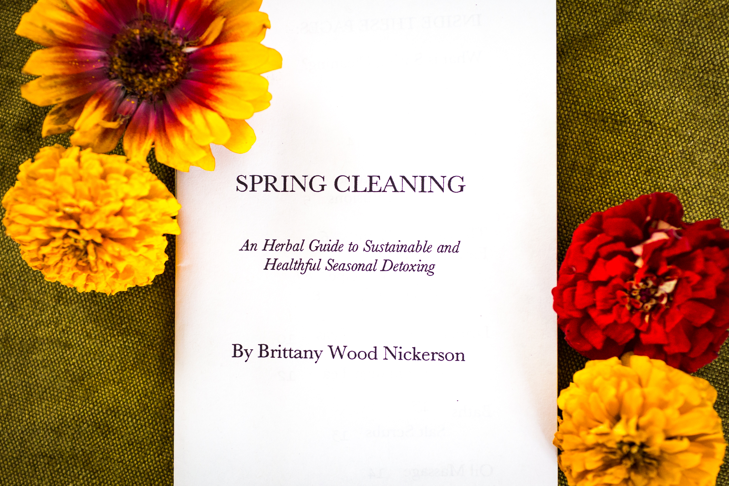 Spring Cleaning Pamphlet Thyme Herbal