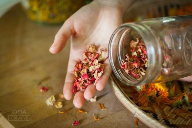 The Art Of Home Herbalism