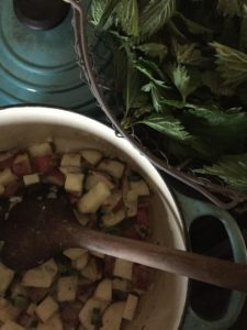 cream of nettle soup recipe from the herbalist's kitchen, Brittany Wood Nickerson