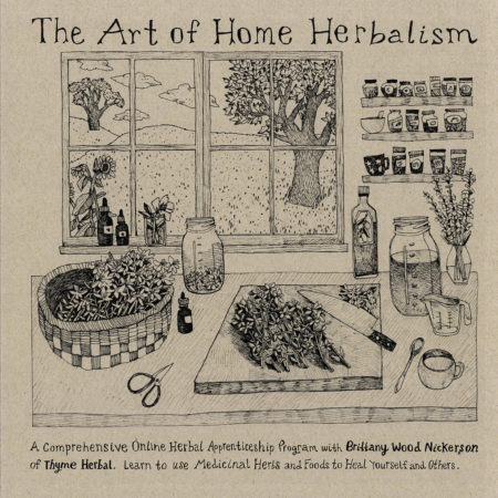 The Art of Home Herbalism Online course booklet, Brittany Wood Nickerson